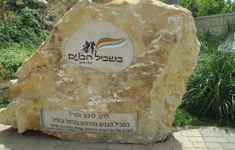 הברית האמיצה- הקהילה הדרוזית ישראלית