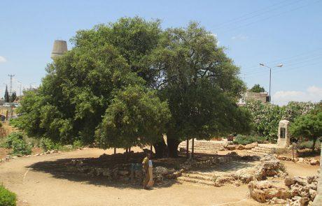דברים שנאמרו באזכרה של אנשי כפר עציון בשנת התשס״ח